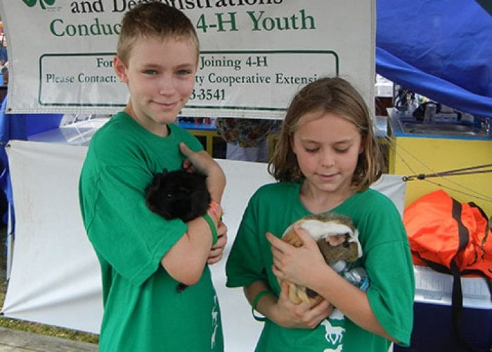 Kids with Guinea Pigs | 4H Show