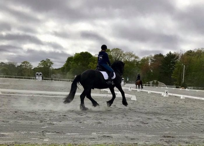 Equestrian Events | Marshfield Fairgrounds Facility Rentals