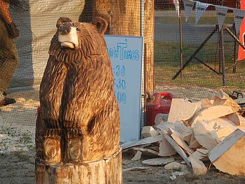 Chainsaw Carved Bear | Chainsaw Carving - Daily Entertainment