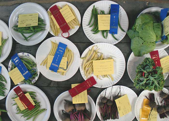 Plates of Various Vegetables | Agriculture Exhibitor Information