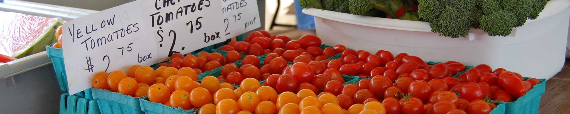 Pints of Yellow and Cherry Tomatoes | Farmers Market