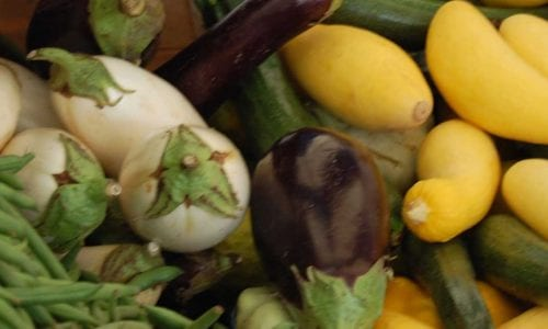 Pile of Fresh Veggies   Get Involved